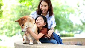 Families with mothers and daughters hugging Shiba Inu dogs and looking at the mouth and teeth for dogs.