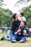 Families op de weide stock afbeeldingen