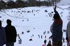 Families in the snow. Families enjoying the snow covering Roundhay Park, Lees, England Stock Photography