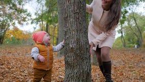 Familiespelen, vrolijke baby met moederspelen naast boom op achtergrond van gele bladeren in de herfst stock footage