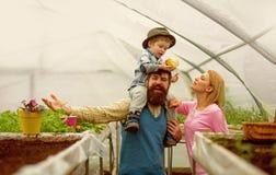 Familiewaarden Gelukkige Familiewaarden De familie taxeert concept familiewaarden en vertrouwensmensen in serre royalty-vrije stock afbeelding