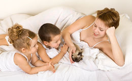 Familiy playing with a little kitten laying in bed Stock Photos