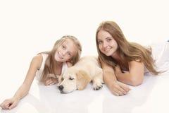 Familj älsklings- guld- labrador arkivbild
