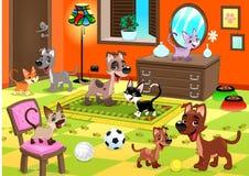 Familj av katter och hundkapplöpning i huset. Fotografering för Bildbyråer