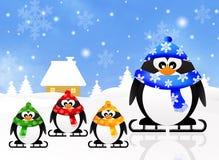 Familj av pingvin Arkivfoton