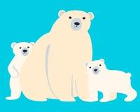 Familj av polara björnar Arkivfoton