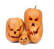 Familj av pumpor halloween Jack O'Lantern. Arkivfoton