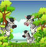 Familj av sebratecknade filmen med skogbakgrund royaltyfri illustrationer