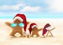 Familj av sjöstjärnan på sommarstranden och den santa hatten glad jul arkivbild