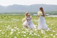 Familj i blommafält Royaltyfri Bild