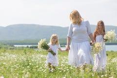 Familj i blommafält Arkivbilder