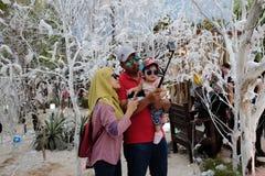 Familj i snöträdgård Arkivfoton