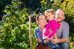 Familj i trädgård Royaltyfria Bilder