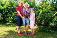 Familj i trädgård Arkivfoton