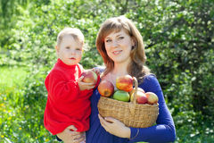 Familj med äpplen i fruktträdgård Royaltyfria Bilder
