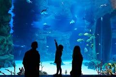 Familj med stor oceanarium för barnbesökare arkivfoto