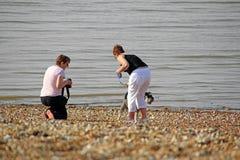 Familj och hund på stranden Arkivfoto