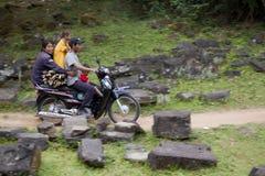 Familj och vedträ på mopeden Arkivfoto