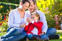 Familj på den trädgårds- gräsmattan Arkivbilder