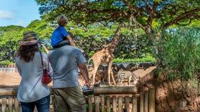 Familj på en zoo arkivbilder