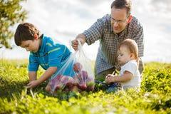 Familj på gräset Arkivfoton
