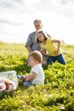 Familj på gräset Fotografering för Bildbyråer