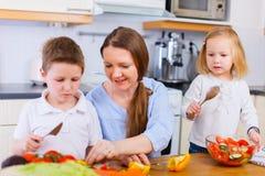 Familj på kök Fotografering för Bildbyråer