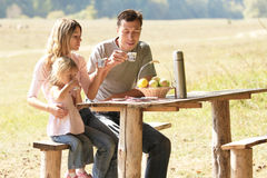 Familj på picknicken Royaltyfria Bilder