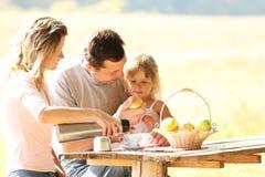 Familj på picknicken Royaltyfri Bild