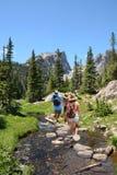 Familj som fotvandrar i berg på sommarsemester arkivbilder