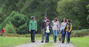 Familj som fotvandrar i sjöområdet stock video