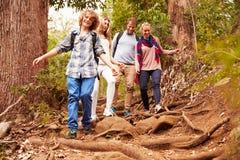 Familj som fotvandrar till och med en skog Arkivfoto
