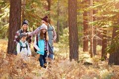 Familj som har gyckel som fotvandrar till och med skogen, Kalifornien, USA fotografering för bildbyråer