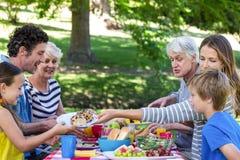 familj som har picknicken Royaltyfria Bilder