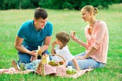 Familj som har picknicken i parken arkivbilder