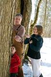 Familj som knackar lätt på en sockerlönntree Arkivbilder