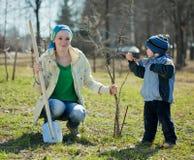 familj som planterar treen Royaltyfri Bild