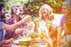 Familj som rostar drinkar, medan ha lunch på gräsmatta arkivfoton