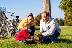 Familj som samlar kastanjer på cykeltur Royaltyfri Fotografi
