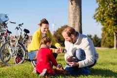 Familj som samlar kastanjer på cykeltur fotografering för bildbyråer