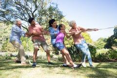Familj som spelar dragkampen i parkera Arkivfoto