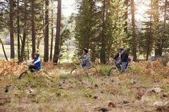 Familj som tillsammans cyklar till och med en skog, sidosikt som är mer nära arkivbilder