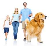 Familj som tillsammans daltar hundinnehavhanden royaltyfri fotografi