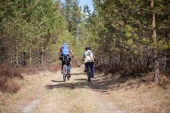 Familj som utomhus cyklar, vårskog. Royaltyfria Foton