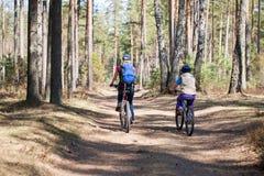 Familj som utomhus cyklar, vårskog. Royaltyfri Foto