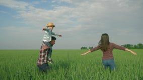 Familjagribusiness, man med ungepojken på skuldror och kvinnasnurr och hagyckel under går i grönt vetefält arkivfilmer
