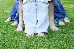 Familjben - vibrerande färg Royaltyfri Fotografi
