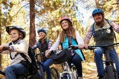 Familjberg som cyklar i en skog, främre sikt för låg vinkel Royaltyfri Foto