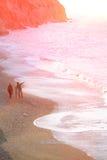 Familjen av moderfadern behandla som ett barn att gå på mjuk signal för strand Royaltyfri Foto