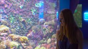 Familjen besöker en oceanarium Steadycam skott av en kvinna som går vid ett stort ett akvarium med tropiska fiskar arkivfilmer